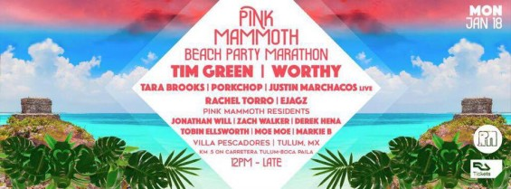 pink-mammoth-tulum-2016-lineup-deeplymoved